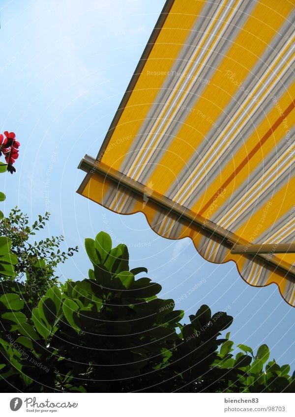 Sommer-Markise02 Hecke gelb Streifen Terrasse Balkon Ferien & Urlaub & Reisen Garten Park Wetterschutz Schönes Wetter Schutz