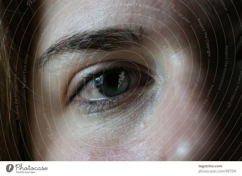 Das hast Du nicht wirklich getan, oder? Augenbraue schweigen Blick Wimpern Frau Vorwurf Gesicht tagstiles Makroaufnahme Haut Augenhöhe