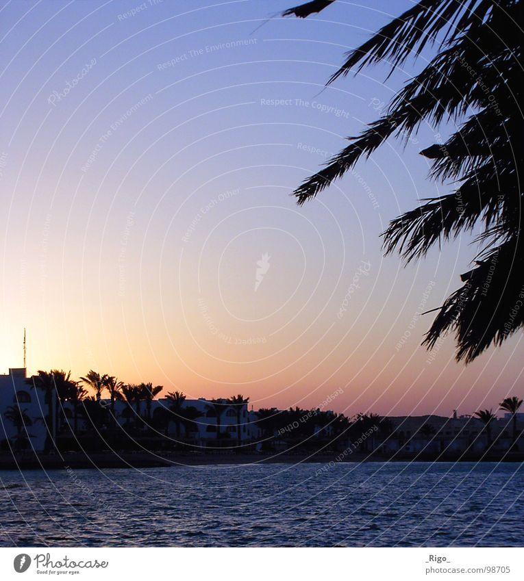 Die Sonne ist weg Sonnenuntergang Palme Strand Meer Haus Küste Afrika Himmel Wasser blau Bucht