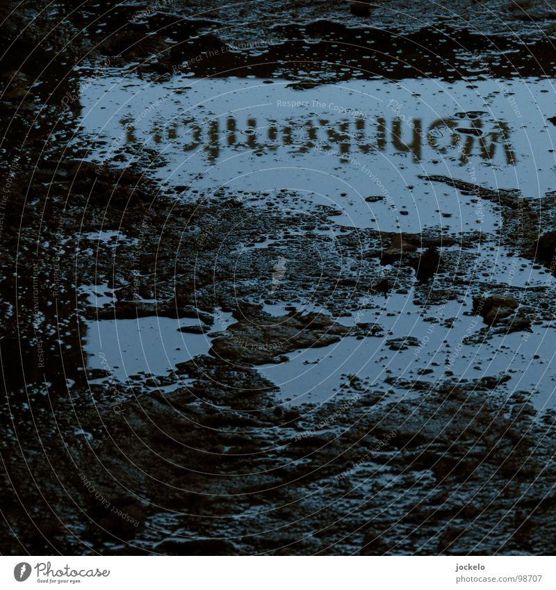 Wohnkomfort Regen Angst dreckig Wohnung Beton Industrie Bodenbelag Baustelle Müll Häusliches Leben Handwerk Kino Ladengeschäft Panik Konstruktion Teppich
