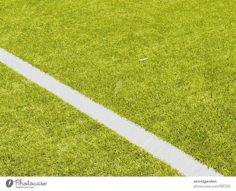 von links mitte nach rechts unten weiß grün ruhig Sport Spielen Linie Fußball hell Schilder & Markierungen verrückt Rasen Spielfeld Am Rand Bildausschnitt Sportplatz
