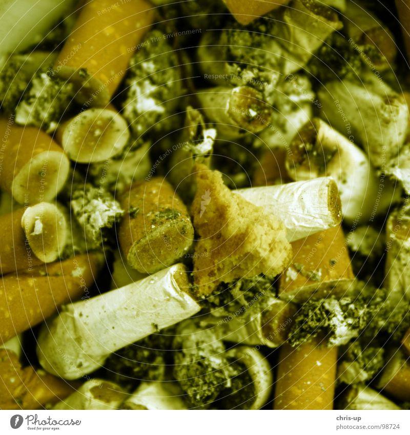Rauchen ist.... Zigarette Aschenbecher Geruch dreckig Lunge gefährlich Tabak Zigarre Kuba Streichholz Feuerzeug drehen ungesund Ekel hässlich Brand Gastronomie
