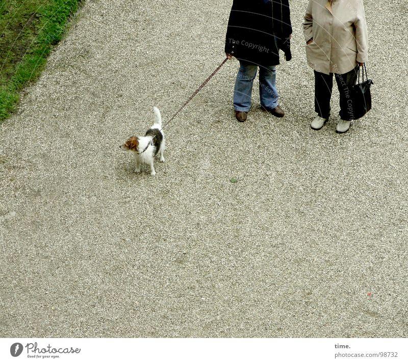und ich sach noch Herbert sach ich Farbfoto Gedeckte Farben Außenaufnahme Bildung sprechen Seil Frau Erwachsene Wiese Jacke Hund Langeweile Kies Handtasche