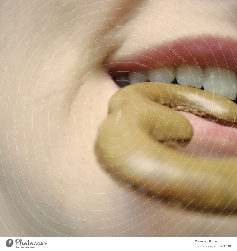 Eins: Justus, Bob & Peter??? Frau Ernährung Mund süß 3 Ziffern & Zahlen Zähne lecker Kuchen Backwaren beißen Wange Biss Schneidezahn Mundwinkel Russisch Brot