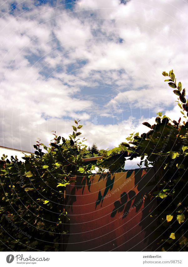 Eingangslied {n} = introit Sonne Sommer Haus Garten Wärme Park Tür Fassade geschlossen modern Häusliches Leben Physik heiß obskur Mieter