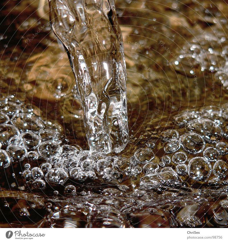 Quelle der Erfrischung Luftblase Klarheit kalt nass fließen sprudelnd feucht Nordwalde Makroaufnahme Nahaufnahme Fluss Bach Wasser blasen Durst Nahaufnahem
