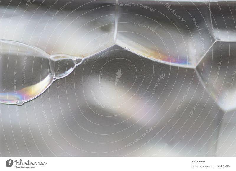 Rainbow bubble Gesundheitswesen harmonisch Seifenblase Lounge Industrie Technik & Technologie Wissenschaften Fortschritt Zukunft Informationstechnologie Wasser