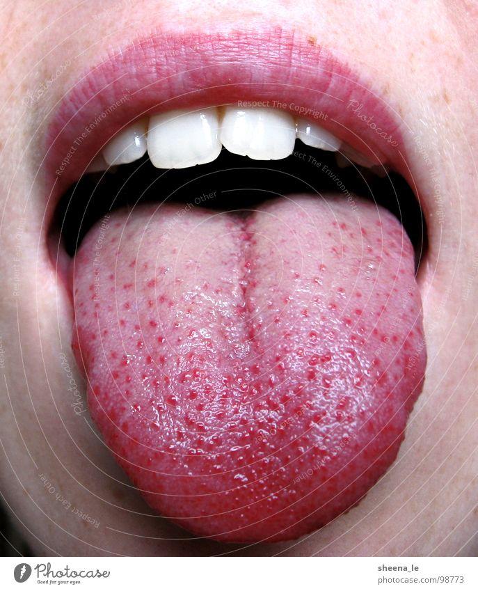 Zunge rot Freude Mund lustig rosa Zähne Lippen frech