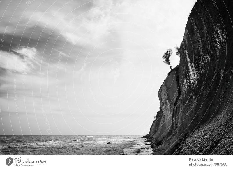 Collapsing Horizon (2) Umwelt Natur Landschaft Urelemente Erde Luft Himmel Horizont Klima Klimawandel Wetter Pflanze Baum Wellen Küste Strand Bucht Ostsee Meer