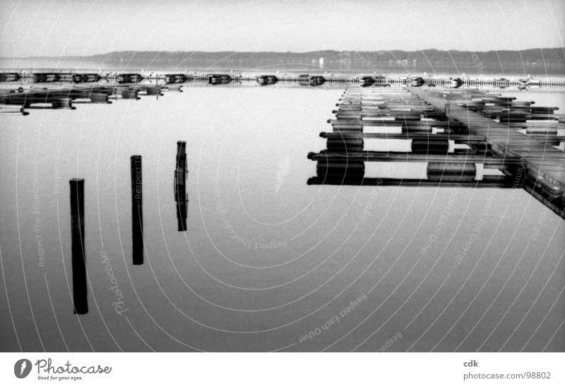 ankommen See beruhigend Glätte Menschenleer Anlegestelle Wasserfahrzeug wegfahren ankern Spaziergang Licht Reflexion & Spiegelung Oberfläche Steg Holz Horizont
