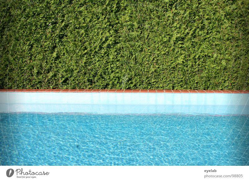Geordnetes Freizeitangebot Schwimmbad Hecke Sommer Ferien & Urlaub & Reisen Wohnung Ecke Chlor Umwälzung nass feucht Physik Kühlung grün leer privat unbenutzt