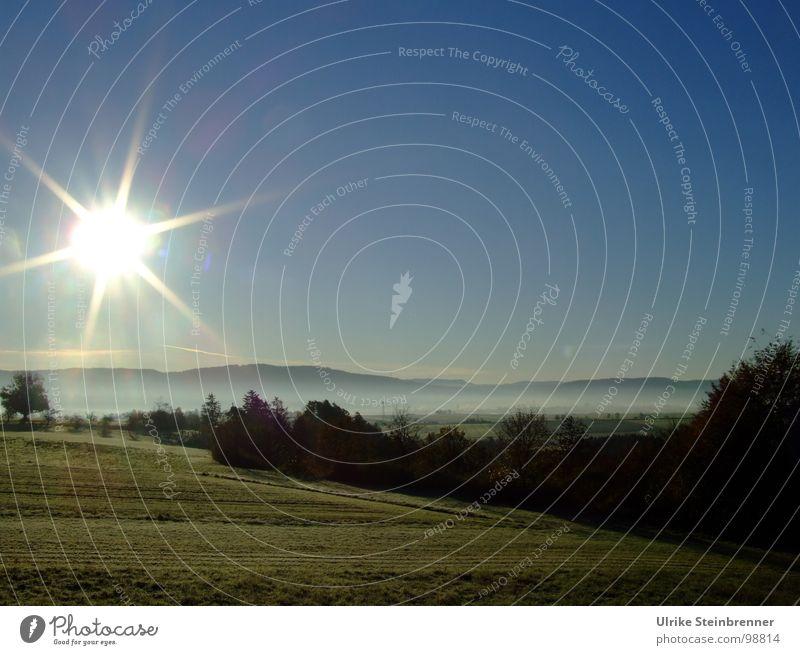 Strahlender Morgen Natur schön Himmel Baum Sonne grün blau kalt Erholung Wiese Berge u. Gebirge Landschaft Beleuchtung glänzend Nebel Energie