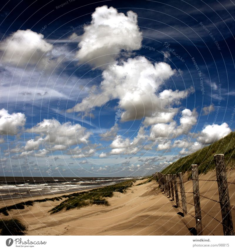 we are nowhere and it is now Meer kalt Strand Wolken weiß grau Zaun Brise See Sonne Physik Sommer frisch Himmel blau Wind Sand Stranddüne Wetter Wildtier Wärme