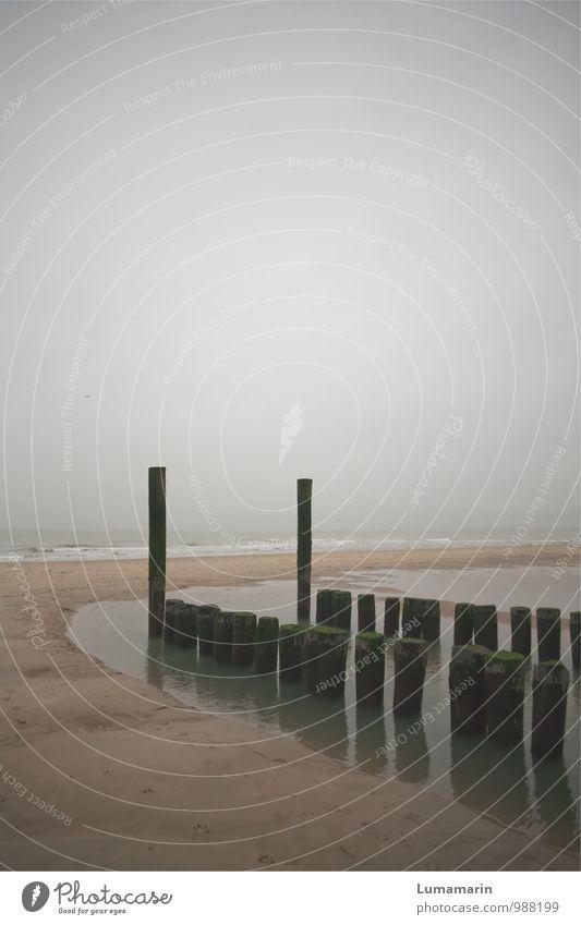 überstehen Umwelt Landschaft Horizont Herbst schlechtes Wetter Strand Nordsee Buhne alt kalt nass trist grau Stimmung Traurigkeit Einsamkeit