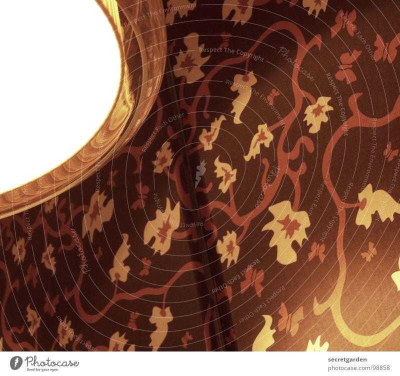 blumen und käfer mal anders Siebziger Jahre retro Tapete Lampe Hängelampe Wand Restaurant Licht Am Rand Blumenmuster braun gelb Fan Muster Froschperspektive