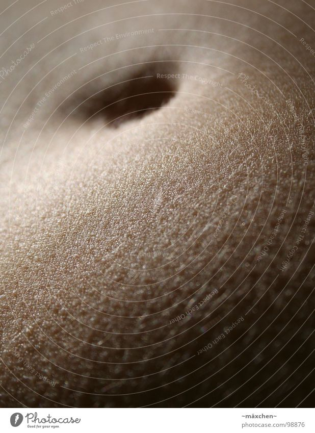 schöööner Bauch II schön dunkel Wärme Haare & Frisuren Haut dünn dick Loch Tiefenschärfe Glätte Bauchnabel behüten Pore
