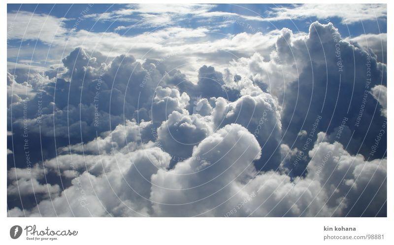 grenzweg Ferien & Urlaub & Reisen Ferne Luftverkehr Himmel nur Himmel Wolken Unendlichkeit blau weiß Hoffnung Erwartung Vergänglichkeit horizontale Wolken