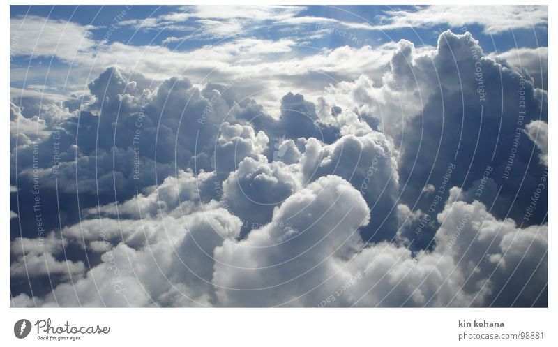 grenzweg Himmel weiß blau Ferien & Urlaub & Reisen Wolken Ferne Luft Hoffnung Luftverkehr Vergänglichkeit Unendlichkeit Erwartung horizontale Wolken nur Himmel