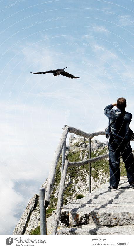Zum Greifen nah Himmel Natur Mann blau weiß Sommer Wolken Ferne Berge u. Gebirge Freiheit oben Stein Vogel fliegen Treppe Nebel