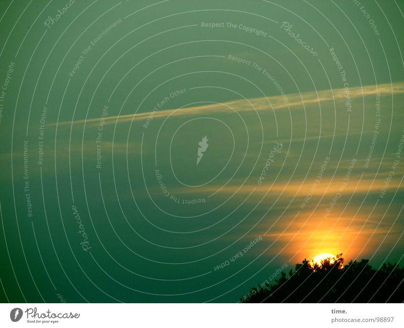 Dort könnte es sein Himmel grün Baum Sonne Wolken Gefühle Kraft Kraft Sehnsucht Vertrauen Fernweh Grundbesitz Abenddämmerung Heimat Liebeskummer Farbenspiel