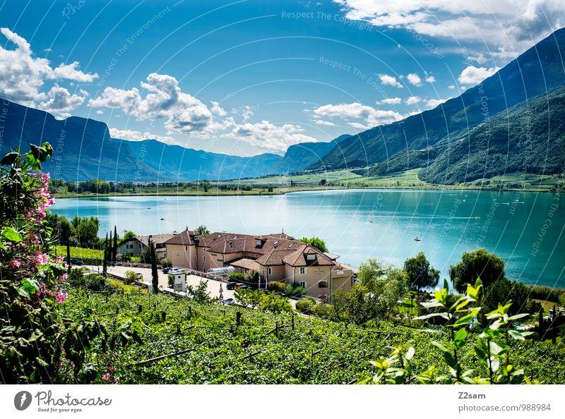 Kalterer See Himmel Natur Ferien & Urlaub & Reisen blau grün Sommer Sonne Landschaft Wolken ruhig Berge u. Gebirge Umwelt natürlich Idylle Sträucher