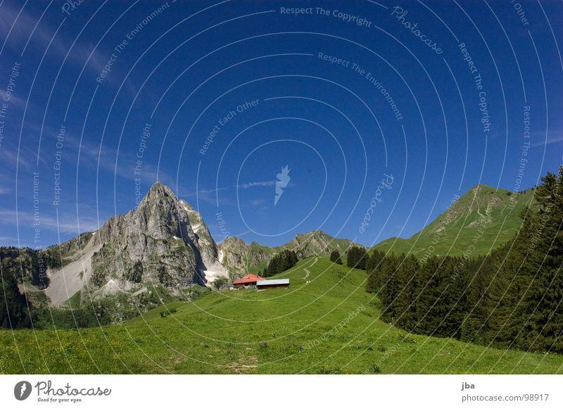 heile Bergwelt Berge u. Gebirge Alm steil Wiese Gras Wald Tanne Stall Scheune abgelegen schön Gesundheit z'Bärg Felsen Stein Amerika Hütte Natur Natur pur