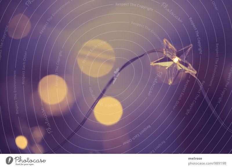 Weihnachtsbokeh Erholung ruhig Winter Feste & Feiern Stimmung träumen glänzend leuchten Idylle gold warten genießen Warmherzigkeit Stern (Symbol) Hoffnung