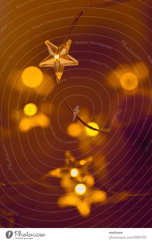 goldner Schein Winter Lichterkette Weihnachten & Advent Stern (Symbol) Bokeh glänzend Lichterscheinung Feste & Feiern genießen leuchten träumen warten schön