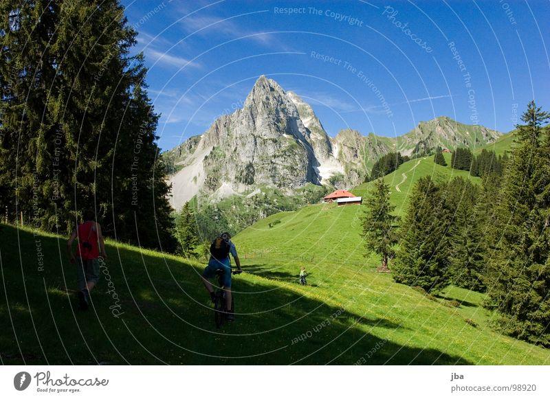 Wanderwetter Berge u. Gebirge Alm steil Wiese Gras Wald Tanne Stall Scheune abgelegen schön Gesundheit Fahrrad fahren wandern Physik z'Bärg Felsen Stein Amerika