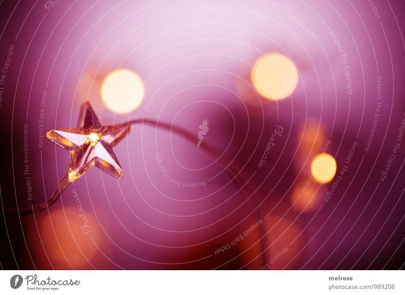 """Lichterglanz Winter """"Lichterkette,"""" Lichterschein Stern (Symbol) Bokeh Erholung Feste & Feiern glänzend genießen leuchten träumen warten schön gold violett"""