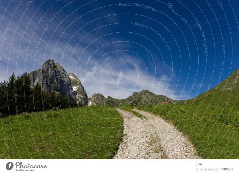 aufwärts Berge u. Gebirge Alm steil Wiese Gras Tanne abgelegen schön Gesundheit Fußweg Steinweg steinig z'Bärg Felsen Amerika Natur Natur pur Wege & Pfade hoch