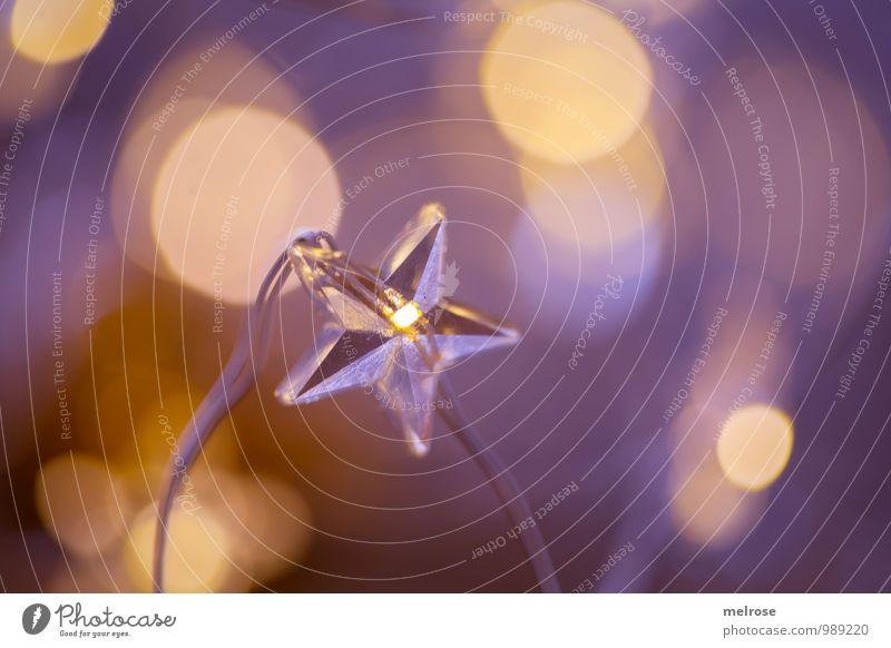 """Sternlein Sternlein ... Lichterkette """"Bokeh,"""" Leuchtpunkte Erholung Feste & Feiern leuchten träumen warten glänzend gold violett Stimmung ruhig Hoffnung Glaube"""