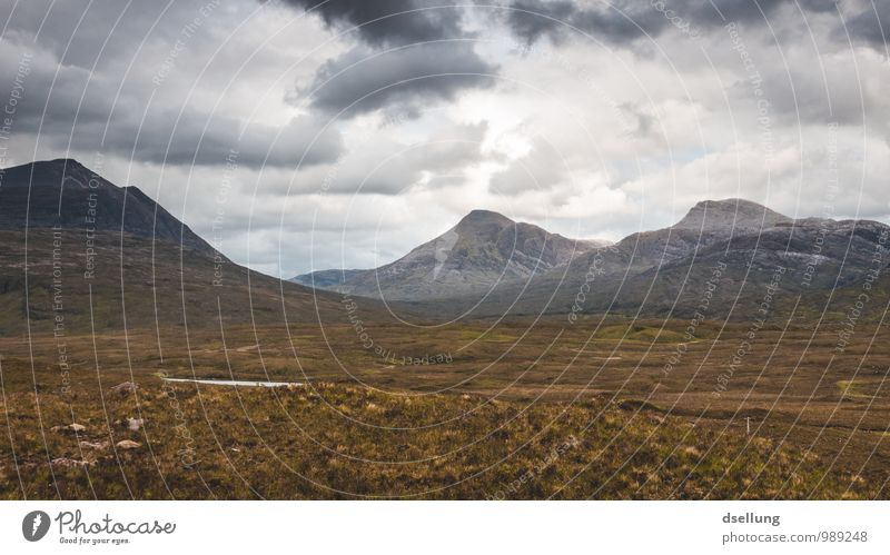 so frei. Himmel Natur Ferien & Urlaub & Reisen Sommer grün Landschaft Wolken Ferne Berge u. Gebirge kalt Herbst Frühling Wiese Gesundheit natürlich Freiheit