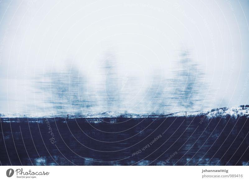 if you're not ready for love, Natur blau weiß Baum Einsamkeit Landschaft ruhig Freude Winter kalt Berge u. Gebirge Bewegung Schnee Wege & Pfade Freiheit Felsen