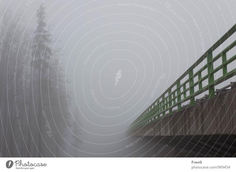 Quo vadis? Himmel Herbst Wetter Nebel Baum Menschenleer Brücke Autobahnbrücke Verkehrswege Straßenverkehr Hochstraße grau grün Stimmung Farbfoto Außenaufnahme