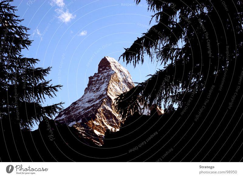 Matterhorn VI Gipfel Schweiz Zermatt Kanton Wallis Bergsteiger Klettern aufsteigen Bergkamm Felswand Tanne Baum Wolken verdeckt Geborgenheit schön groß Macht