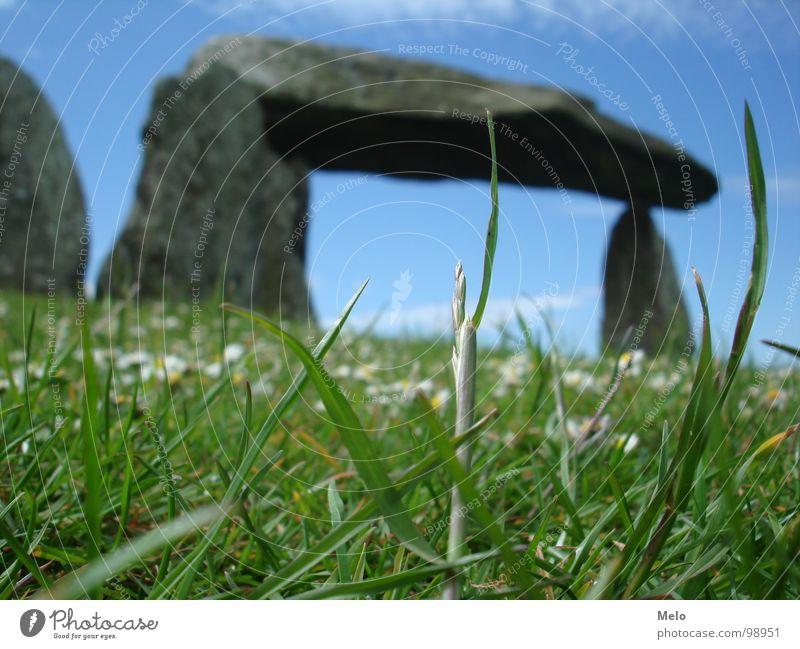 wales I Gras grün Halm Hinkelstein England Stein blau steingebilde