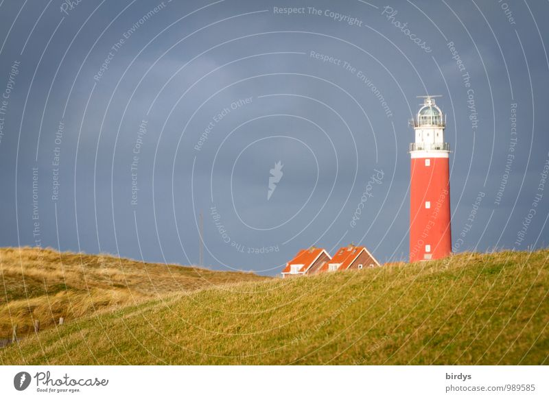 Leuchtturm von Texel Himmel Natur Ferien & Urlaub & Reisen grün Erholung Einsamkeit rot ruhig Wolken Herbst grau authentisch ästhetisch Insel Freundlichkeit