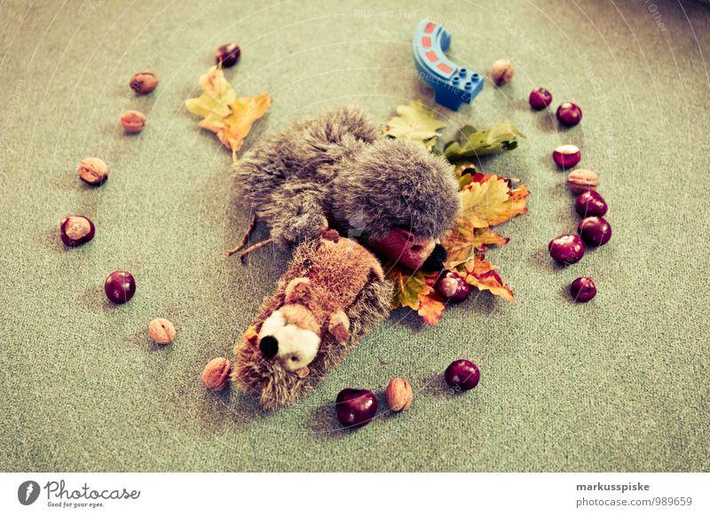 kita kindergarten spielzeug Kind Blatt Spielen Glück Fröhlichkeit lernen Kindergruppe Kleinkind Herbstlaub Kindergarten herbstlich Kindererziehung kreisrund