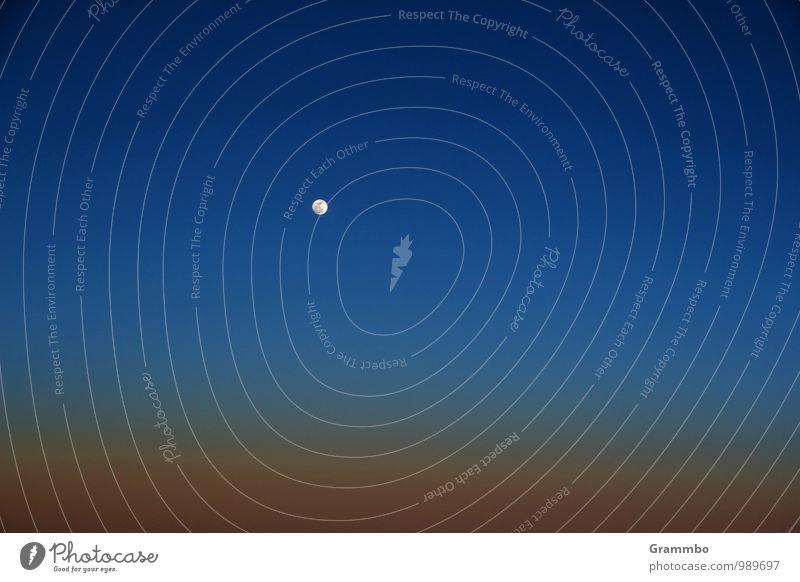 Ein Hauch von Unendlichkeit Luft Himmel nur Himmel Schönes Wetter blau Mond Mondschein Farbfoto Außenaufnahme Menschenleer Textfreiraum links