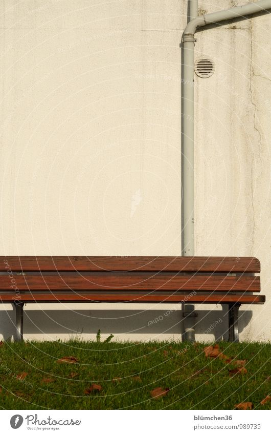 Es sind noch Sonnenplätze frei! Gras Rasen Wiese Blatt Garten Park Stadt Mauer Wand Dachrinne Lüftungsschacht Parkbank Bank Sitzgelegenheit Holzbank sitzen