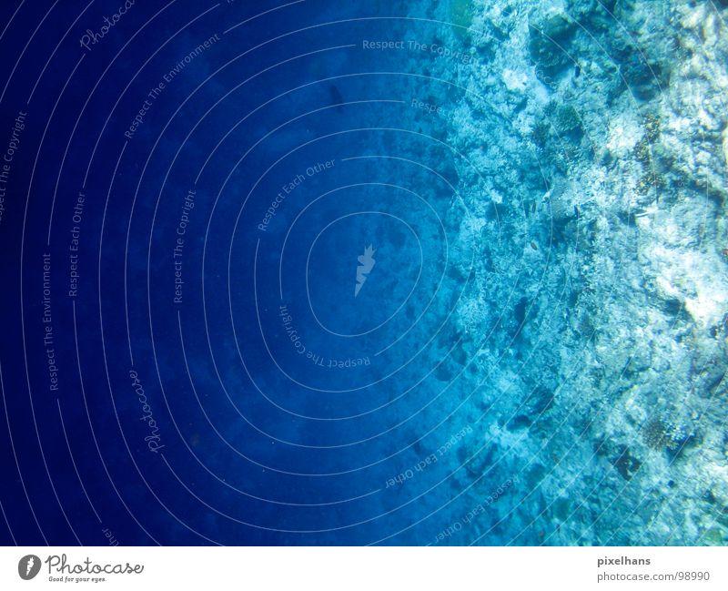 Stille Wasser sind... weiß Meer blau Sommer Strand Ferien & Urlaub & Reisen kalt Stein Sand Küste nass Insel tauchen Schwimmen & Baden unten