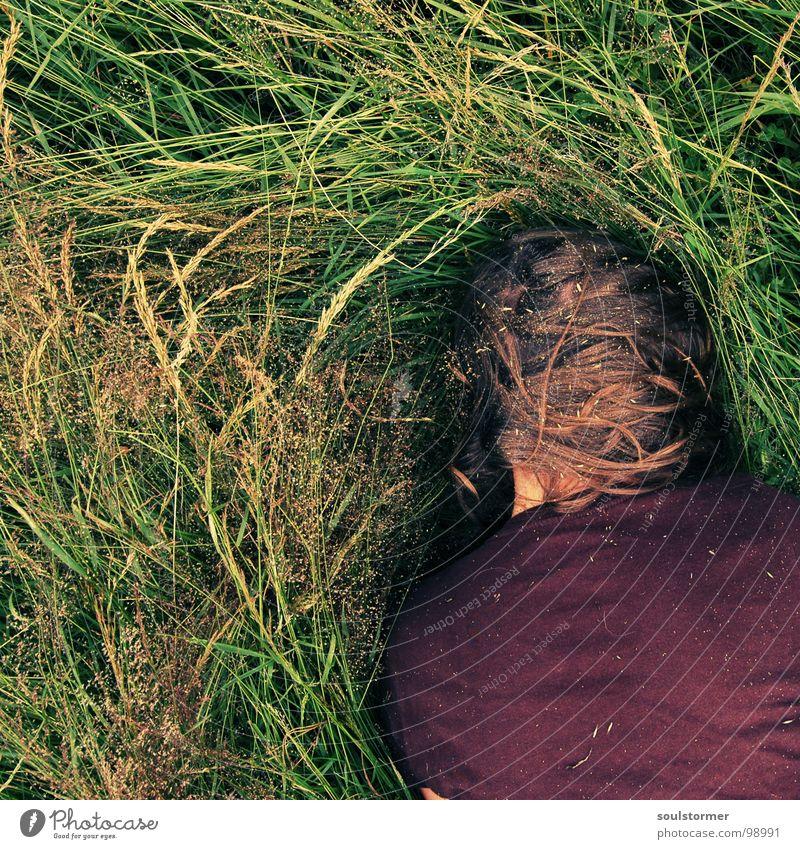 Heuschnupfen Mensch Natur Pflanze Sommer Erholung Wiese Gras Haare & Frisuren Kopf Junge Frau liegen dreckig Nase Ecke schreien Quadrat