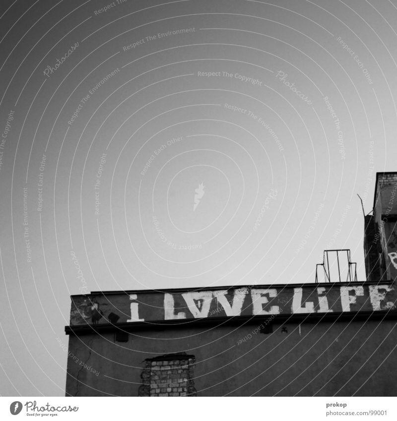 I sure do alt Himmel Stadt Freude Liebe Haus Leben grau Graffiti Kraft Beton modern Dach Kultur Lebensfreude