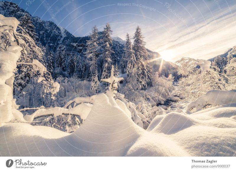 Winter in den italienischen Alpen Himmel Natur Ferien & Urlaub & Reisen blau Baum Erholung Landschaft Freude Ferne Wald kalt gelb Berge u. Gebirge Schnee