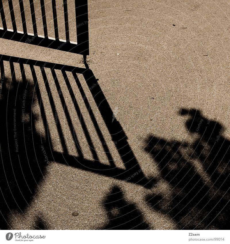 offen aufmachen Sommer Schatten Gitter Teer Beton Physik braun beige sehr wenige Architektur Tor Sonne Metall Tür Stab Wärme Ast Strukturen & Formen einfach