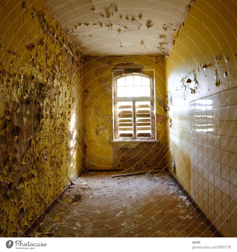 nur schnell noch überstreichen Häusliches Leben Renovieren Umzug (Wohnungswechsel) Raum Küche Bad Haus Ruine Mauer Wand Fassade Fenster alt kaputt braun gelb