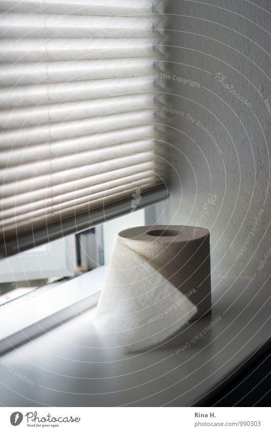 Stilles Örtchen Bad Toilette Fenster Erholung authentisch Toilettenpapier Klorolle Jalousie Fensterbrett Verdauungsystem Gedeckte Farben Innenaufnahme