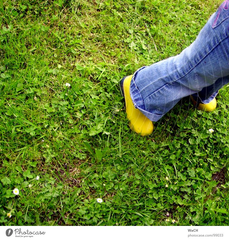 GiG (Gummistiefel im Gras) grün grasgrün Stiefel gelb Latex Kautschuk Kind Wiese Feld Freizeit & Hobby Gewitter dreckig Regen Rasen