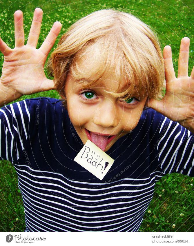 Bääh! Kind Hand grün Gesicht Auge Junge Gras Haare & Frisuren blond Nase Finger Zettel Zunge frech grasgrün